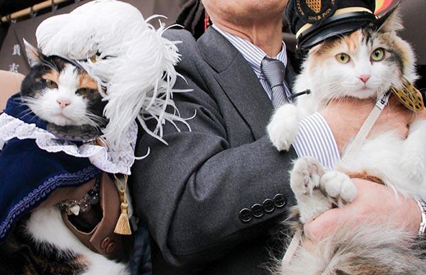 La gata Tama jefe de estación